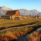 Moulton barn by Robyn Lakeman