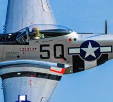 """P-51D Mustang 44-13521/5Q-B G-MRLL """"Marinell"""" Sticker"""