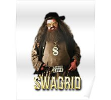 swagrid Poster