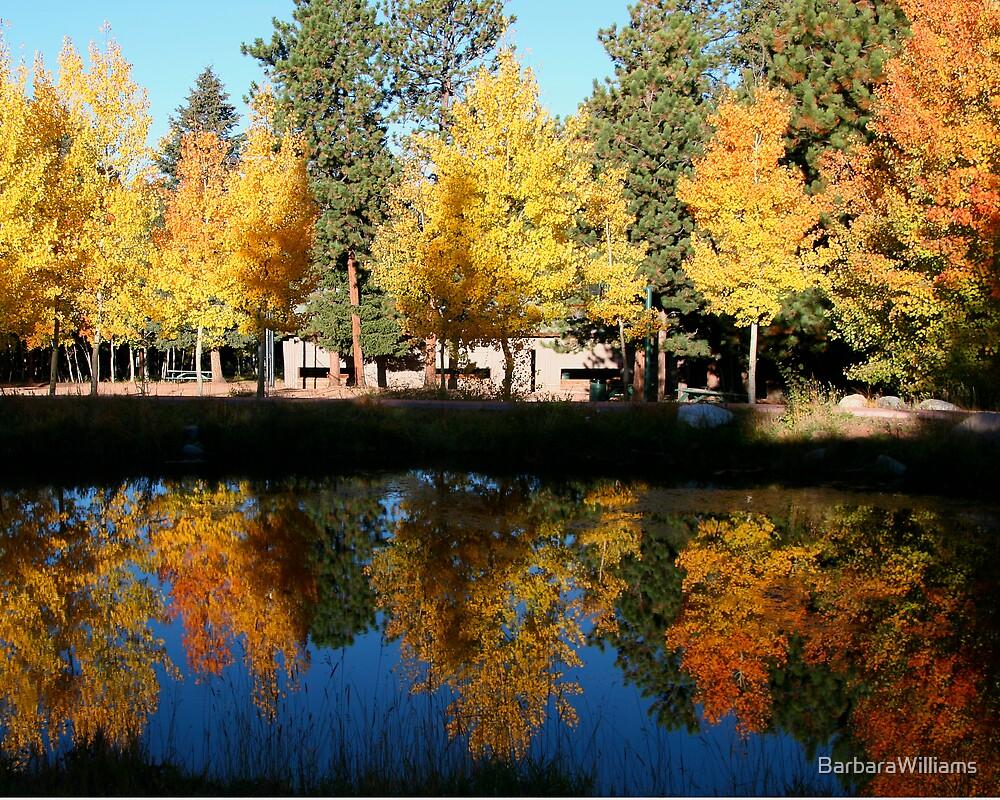 Woodland Park by BarbaraWilliams