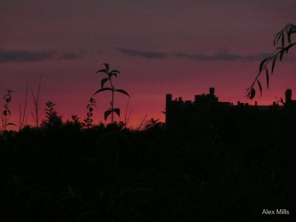 Arundel Castle at dusk. by Alex Mills