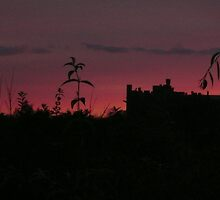Arundel Castle at dusk. by Alex Mills