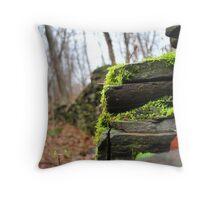 Rock Wall Throw Pillow