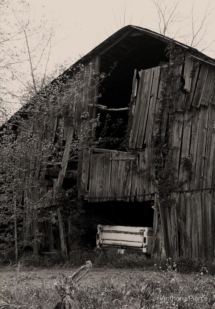 Forgotten by Anthony Pierce
