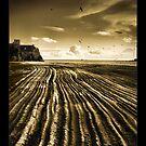 Flowing Textures by José Ramos