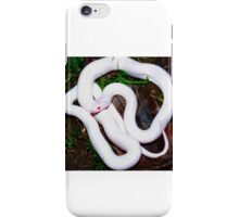 ALBINO SNAKE iPhone Case/Skin