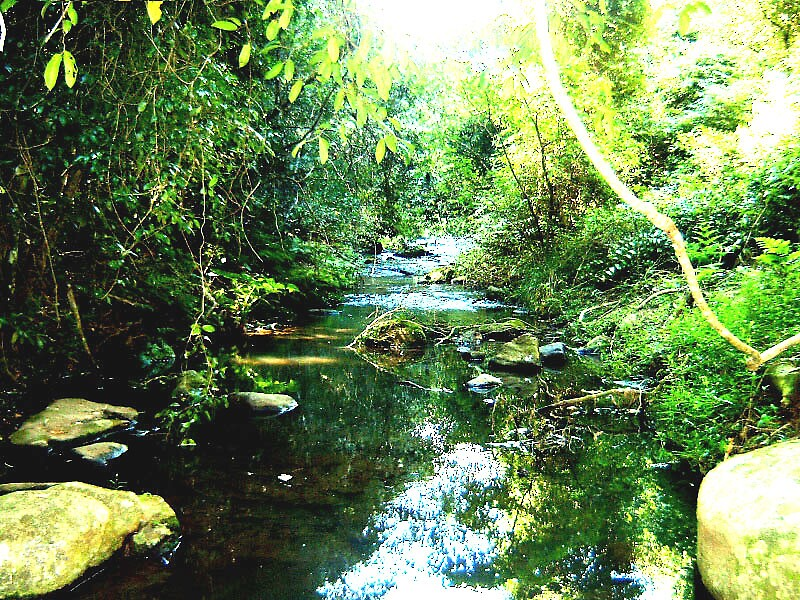 Meran Falls Creek by Rhapsody