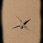 """""""Patrick the starfish"""" wounded by Heather McSpadden"""