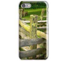 FENCE 1B 3466 iPhone Case/Skin