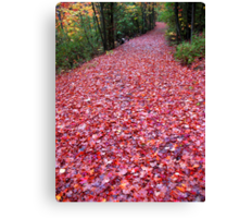 The Real Red Carpet Canvas Print
