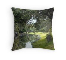 Stream at Sawgrass Park Throw Pillow