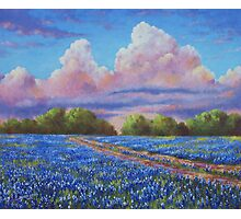 Rain For The Bluebonnets Photographic Print