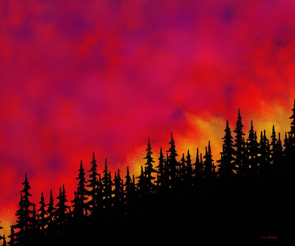 Sky On Fire by Tim Stringer