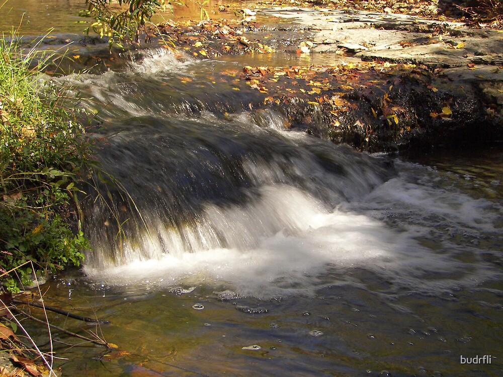 flowing waters by budrfli