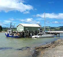 Mangonui Wharf - vessel contrasts.......! by Roy  Massicks