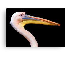 Pink Pelican Canvas Print