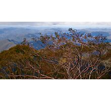 Point Lookout Photographic Print