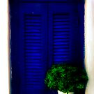 Blue shutters by fabricedeloor