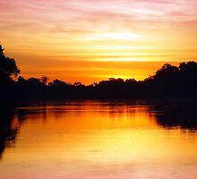 Pantanal Sunset 1 by kuntaldaftary