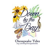 Down by the Bay::Chesapeake Tides Photographic Print
