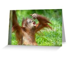 cute baby orangutan Greeting Card