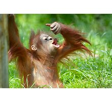 cute baby orangutan Photographic Print