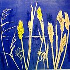 "Mornington Peninsula Grasslands12 by Belinda ""BillyLee"" NYE (Printmaker)"