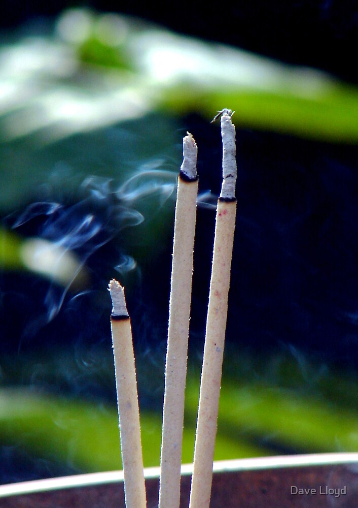 Incense Offering by Dave Lloyd