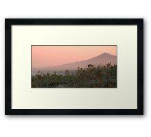 Rose Madder Framed Print