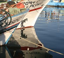 Fishing boats by José Pinheiro