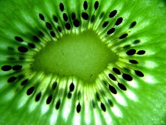Kiwi Fruit by Kathie Nichols