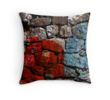 Quin Throw Pillow