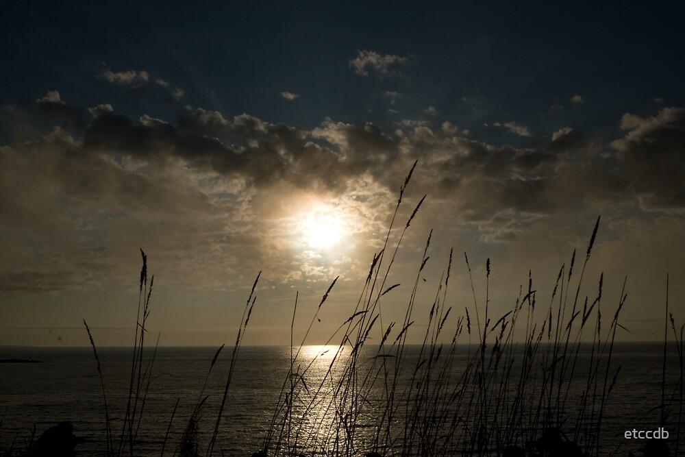 sunrise by etccdb