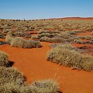 Spinifex Valley, Madigan Line, Simpson Desert by Joe Mortelliti