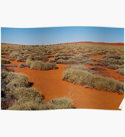 Spinifex Valley, Madigan Line, Simpson Desert Poster