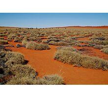 Spinifex Valley, Madigan Line, Simpson Desert Photographic Print