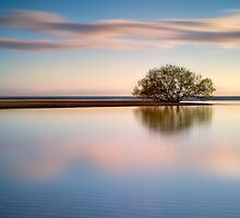 The Symmetry of a peaceful morning at Bushland Beach by PhotoByTrace