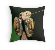 The Champ !!! Throw Pillow