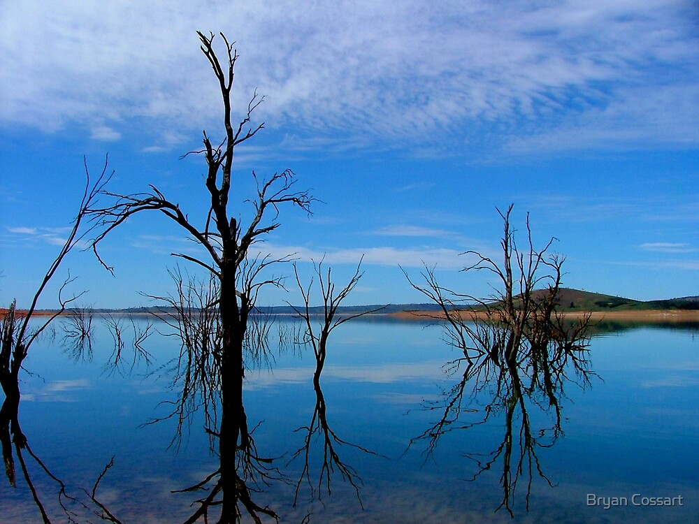 Lake Eucumbene by Bryan Cossart