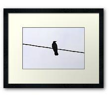 Raven // Norway Framed Print