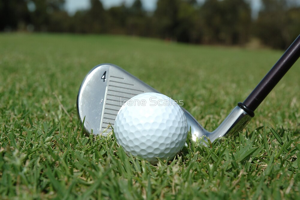 Golf - the perfect game by Irene Scales