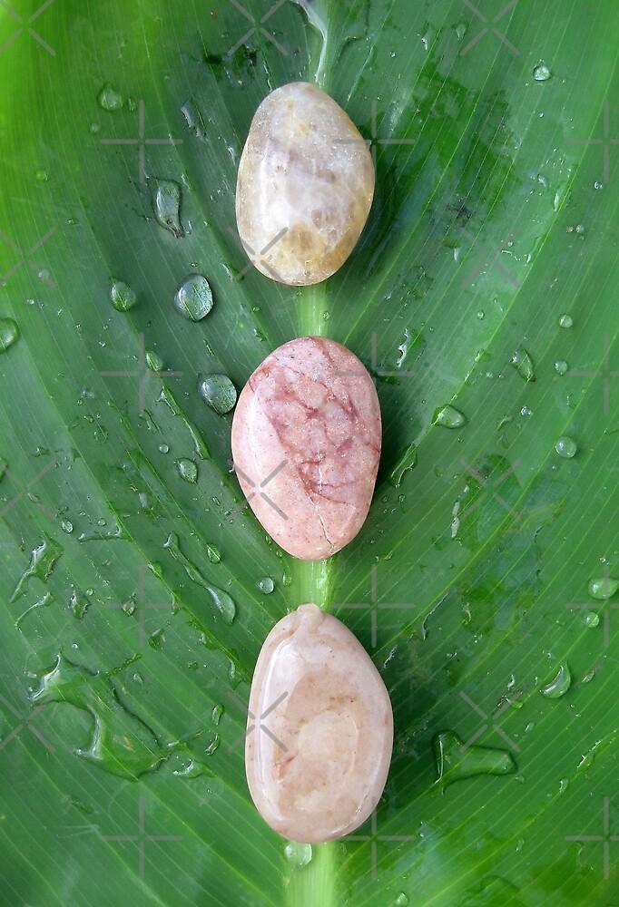 Wet Zen Stones by Ye Liew