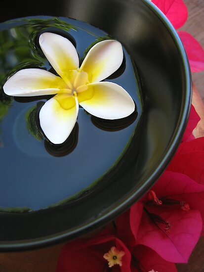 Aromatherapy Bowl by Ye Liew