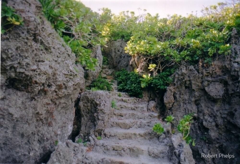 Hidden Stairway by Robert Phelps