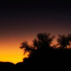Sunset Silhouette  by KellyHeaton