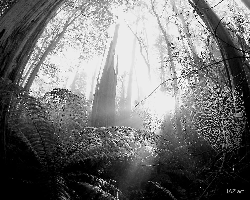 Enchanted Web by Jarrod Lees