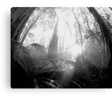 Enchanted Web Canvas Print
