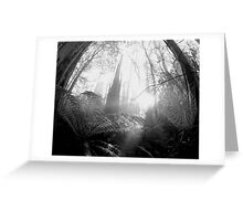 Enchanted Web Greeting Card