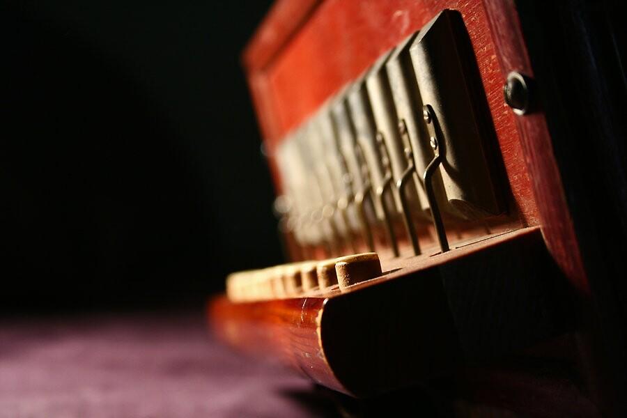 Accordion  by Cassandra Mann