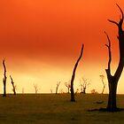 Waste Land... by Jarrod Lees